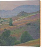Badlands In July Wood Print