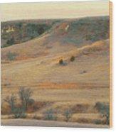 Badlands Prairie Reverie Wood Print