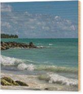Bahamas Beach Wood Print