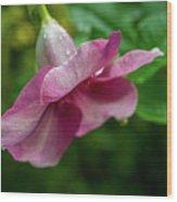 Bahamas Flower Wood Print