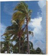 Bahamian Breeze Wood Print