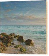 Bahia Honda Shoreline Wood Print