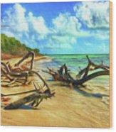 Bahia Honda State Park Wood Print