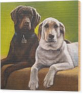 Bailey And Hershey Wood Print