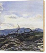 Baker Dam Colorado Wood Print