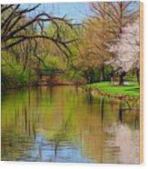 Baker Park Wood Print