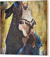 Bakhtiari Falconess Wood Print