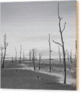 Bako National Park 2 Wood Print