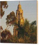 Balboa Park Bell Tower Orig. Wood Print