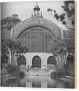 Balboa Park Botanical Garden Wood Print