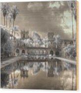 Balboa Park Infrared Wood Print