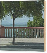 Balcony On The Beach In Naguabo  Puerto Rico Wood Print