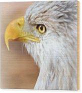 Bald Eagle 15 Wood Print