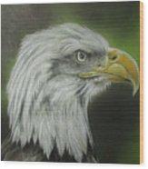 Bald Eagle Close Up Wood Print