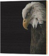 Bald Eagle II Wood Print