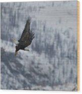 Bald Eagle In Flight-signed-#4016 Wood Print