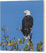 Bald Eagle In The Tree Wood Print