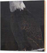 Bald Eagle Majestic Wood Print