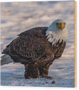 Bald Eagle Over Its Prey Wood Print