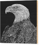 Bald Eagle Scratchboard Wood Print