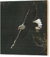 Bald Eagle-signed Wood Print