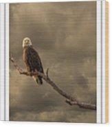Bald Eagle Storm Wood Print