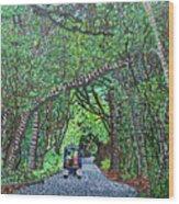 Bald Head Island, Federal Road Wood Print