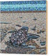 Bald Head Island, Loggerhead Sea Turtle Wood Print