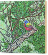Bald Head Island, Painted Bunting At Defying Gravity Wood Print