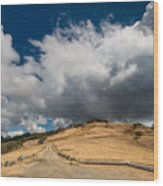 Bald Hills In Summer 2 Wood Print