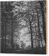Baldringe Meadows Wood Print