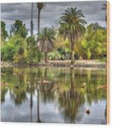 Baldwin Lake Wood Print