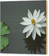Bali Flower Wood Print