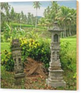 Balinese Rice Field Shrines Wood Print