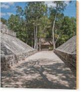 Ball Court At The Coba Ruins  Wood Print
