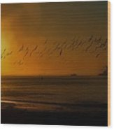 Ballet In The Golden Sunrise, Early Fall. Wood Print