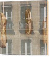 Ballet_shoes Wood Print