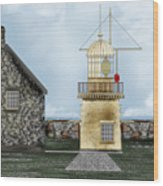Ballinacourty Lighthouse At Waterford Ireland Wood Print