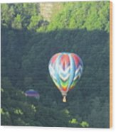 Balloons Over Letchworth Wood Print
