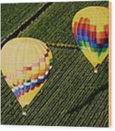 Balloons Over Napa Valley Wood Print by Cindy Lee Longhini