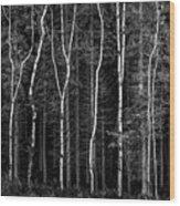 Ballysallagh Forest Mono Wood Print