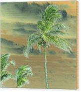 Balmy Palmy Wood Print