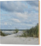 Baltic Sea Wood Print