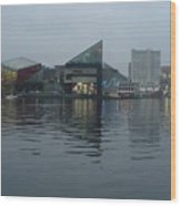 Baltimore Harbor Reflection Wood Print