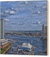 Baltimore Maryland Inner Harbor Wood Print
