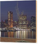 Baltimore Reflections Wood Print
