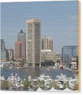 Baltimore Waterfront Wood Print