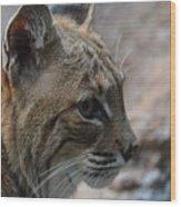 Bama Bobcat Wood Print