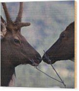 Bambi And Faline Wood Print