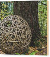 Bamboo Ball Wood Print